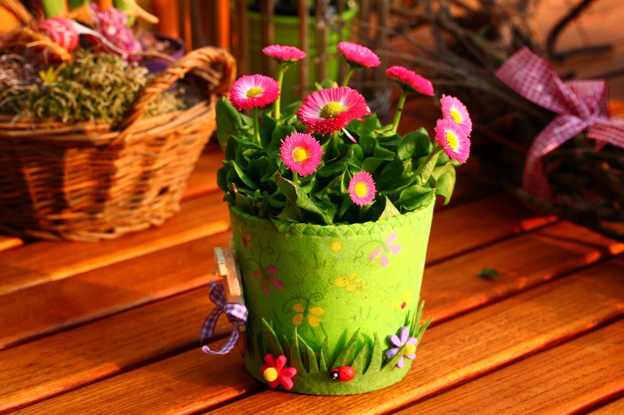 Ab wann kann man Balkonpflanzen rausstellen?